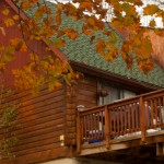 Retriever's Retreat – Secluded Log Cabin